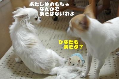 20130510+005_convert_20130510110641.jpg
