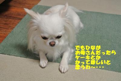 20130513+009_convert_20130513110433.jpg