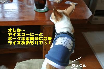 20130515+044_convert_20130520100256.jpg