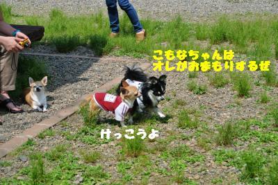 20130515+058_convert_20130520160800.jpg