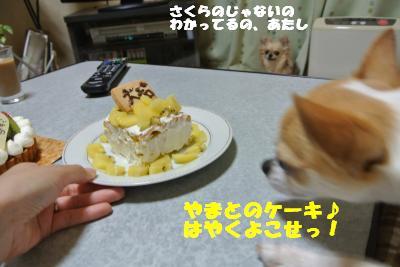 20130603+009_convert_20130604095333.jpg