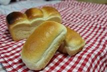 241118パネ食パン