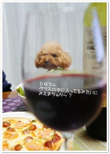 ワイングラスプードル