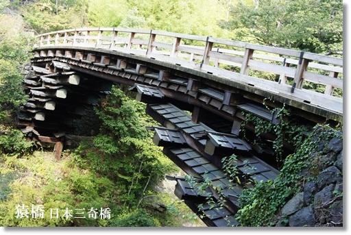 猿橋 全貌