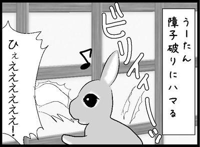 f11_20121019171830.jpg