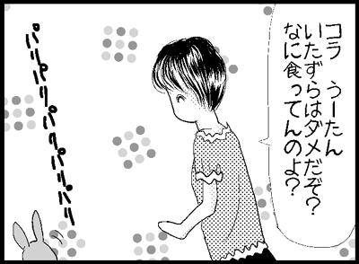 j4.jpg