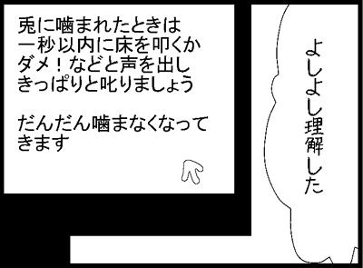 y1_20120921204502.jpg