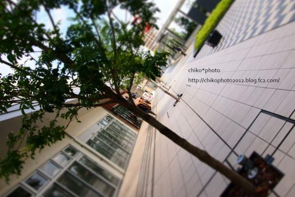 photo-197 幻想
