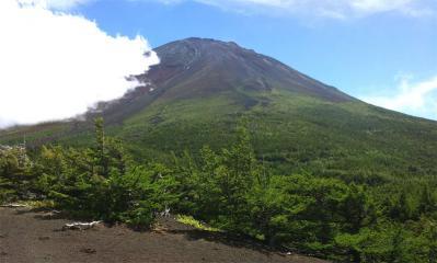 富士箱根伊豆国立公園の奥庭遊歩道から望む富士山
