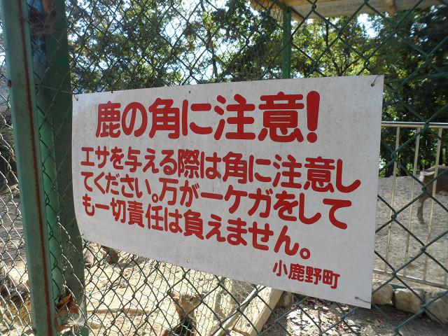 chichibu20120599.jpg