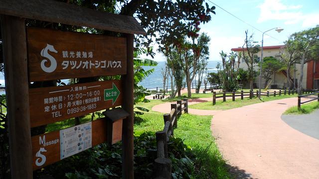 kagoshima20120157.jpg