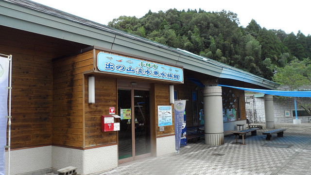 kagoshima20120251.jpg