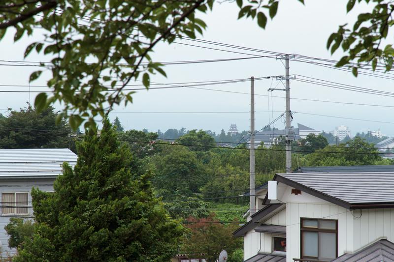 201208117.jpg