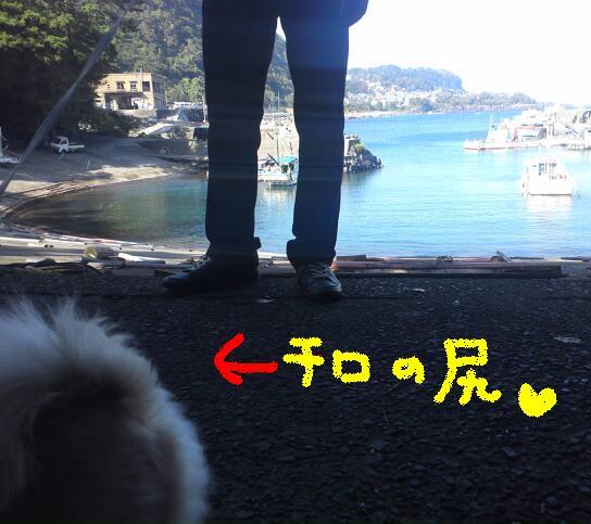 にゃにゃKIMG0639-1