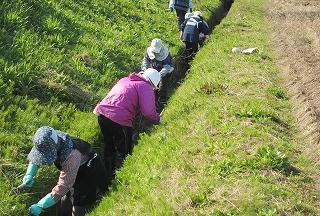 水路草刈・1
