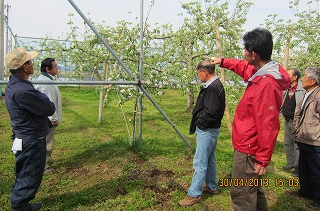りんご研究会