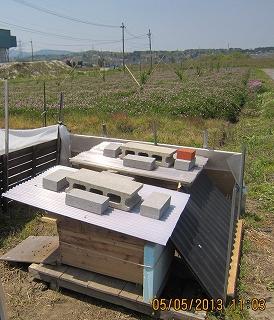 蜂の家とれんげ畑