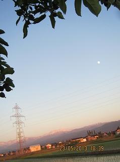 りんご園から月