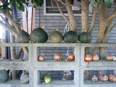 20121021_かぼちゃと玉ねぎ