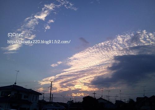 Photo0762.jpg