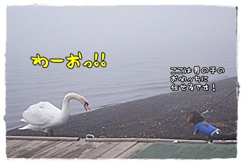 019_20130401211353.jpg