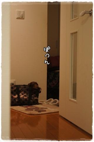 020_20130324093534.jpg