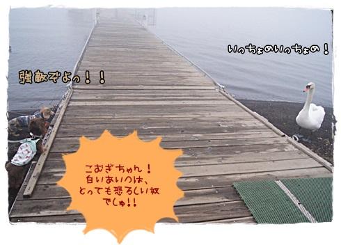 020_20130401211351.jpg