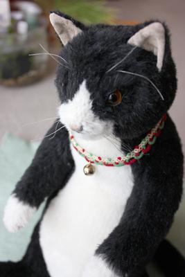 うなぎ猫3