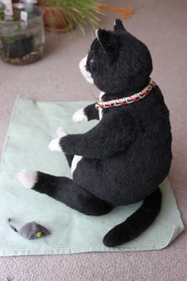 ウナギ猫1