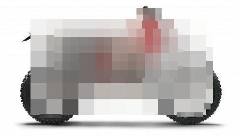 1000728.jpg
