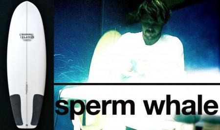 spermwhale.jpg