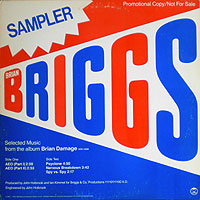 BrianBriggs-Aeo200.jpg