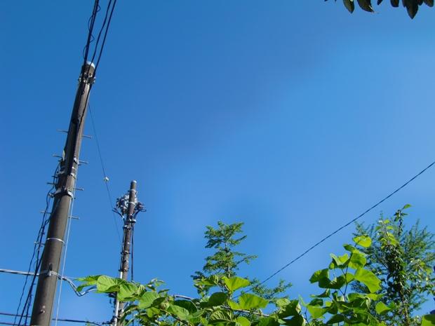 2011_0711_153854-CIMG4831.jpg