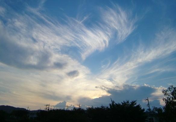 2011_0913_171539-CIMG5144同じ空の下
