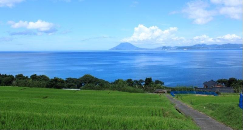 この美しい薩摩の海が