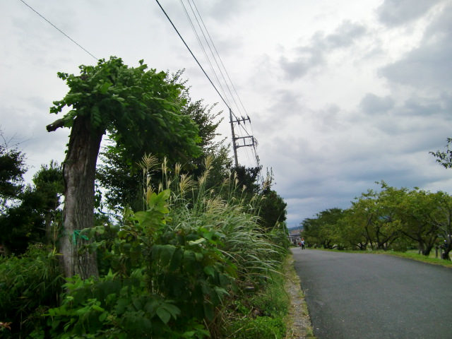 2012_0927_163814-CIMG8213.jpg