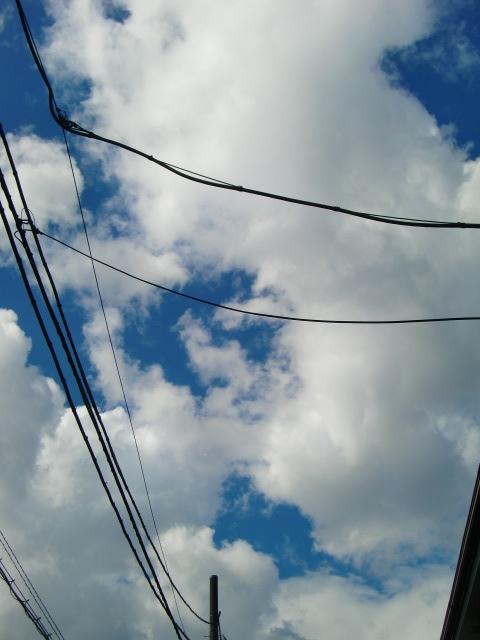2012_1004_131040-CIMG8444.jpg