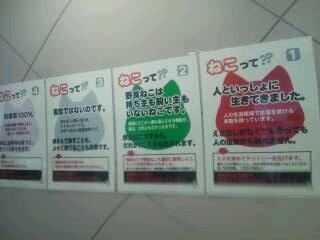 20120907_191416.jpg