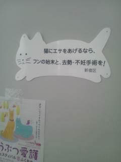 DSC_6188.jpg