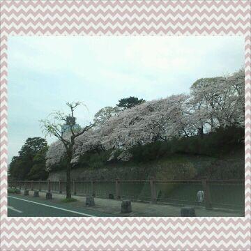 駿府公園 お堀周辺