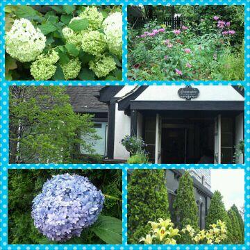 ステキなお庭だね~+。:.゚ヽ(*´ω`)ノ゚.:。+゚