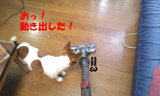 201207201235577d2.jpg