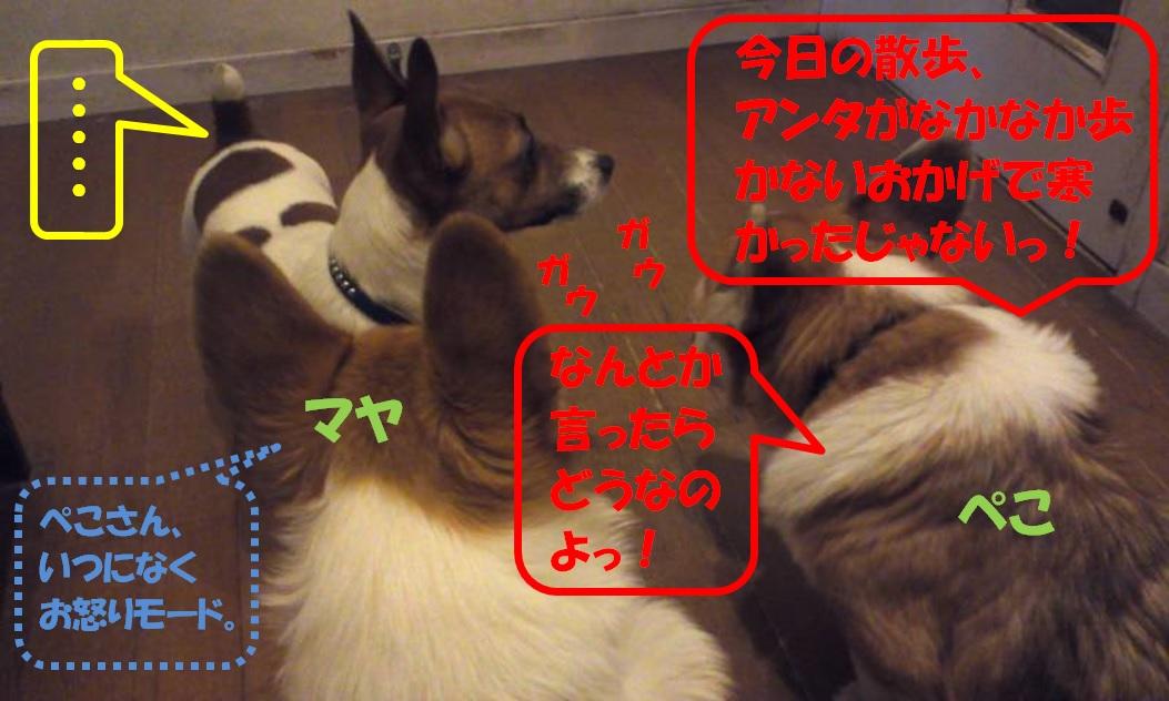 20130115102944977.jpg