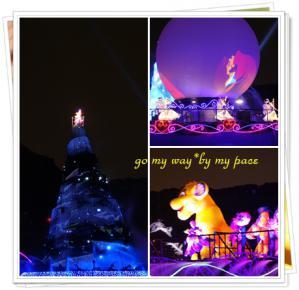 Disney SEA201224