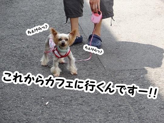 名古屋旅行記 (2)