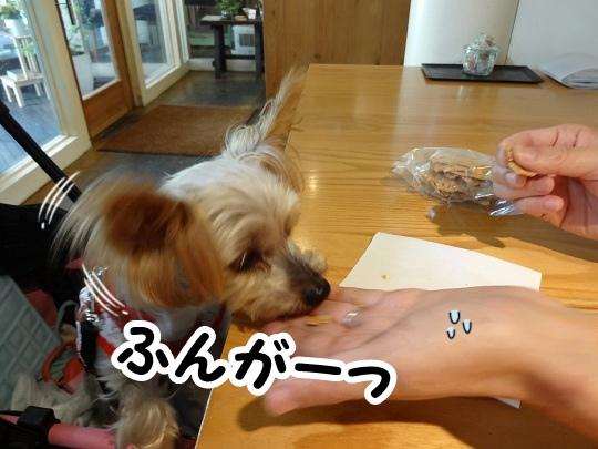 名古屋旅行記 (9)