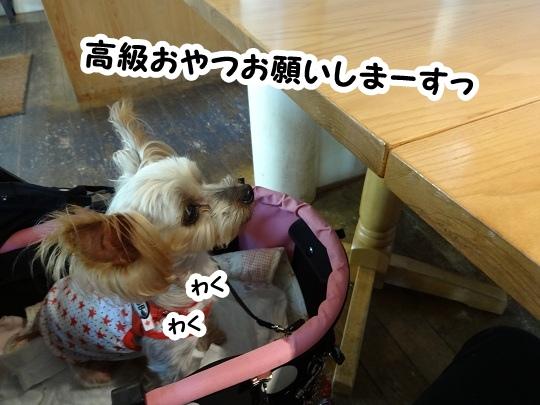 名古屋旅行記 (6)