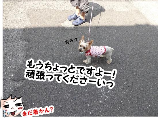 名古屋旅行記 (4)