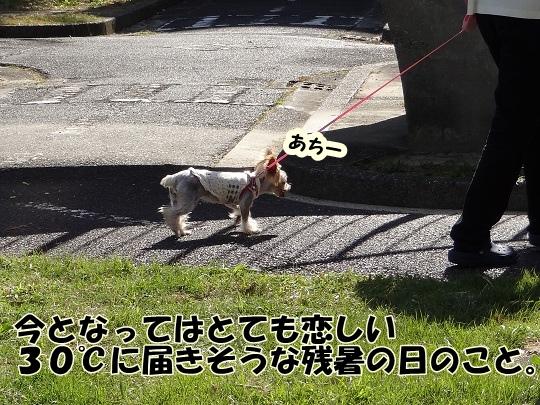 名古屋散歩♪