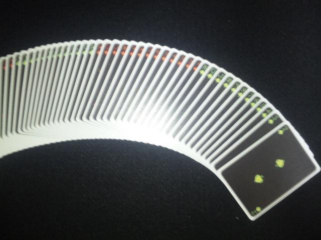 DVC00566.jpg